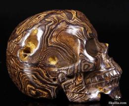 Stromatolite-Fossil-Crystal-Skull-05